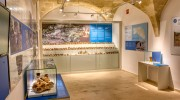 museo04.jpg
